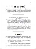 Bill H.R. 5480: African Entrepreneurship Act of 2006