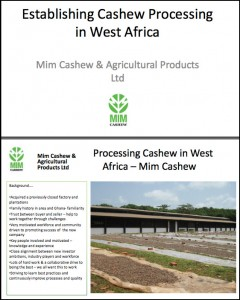 Establishing cashew-processing in West Africa