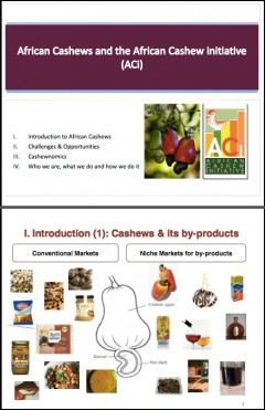 African cashews and the African Cashew Initiative (ACI)