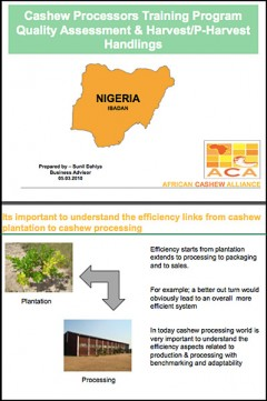 Cashew quality assessment harvest and post-harvest handling