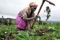 US gives $10 million to support Ghana's agric sector